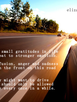 Is Gratitude or Sadness in the Driver's Seat?