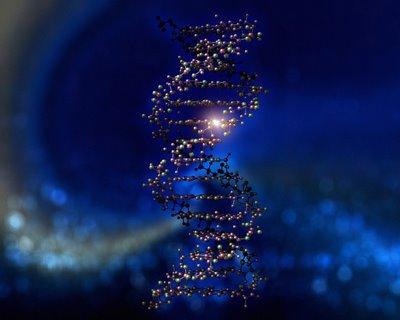 The Spirit Gene